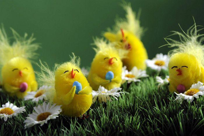 Kuvahaun tulos haulle pääsiäinen